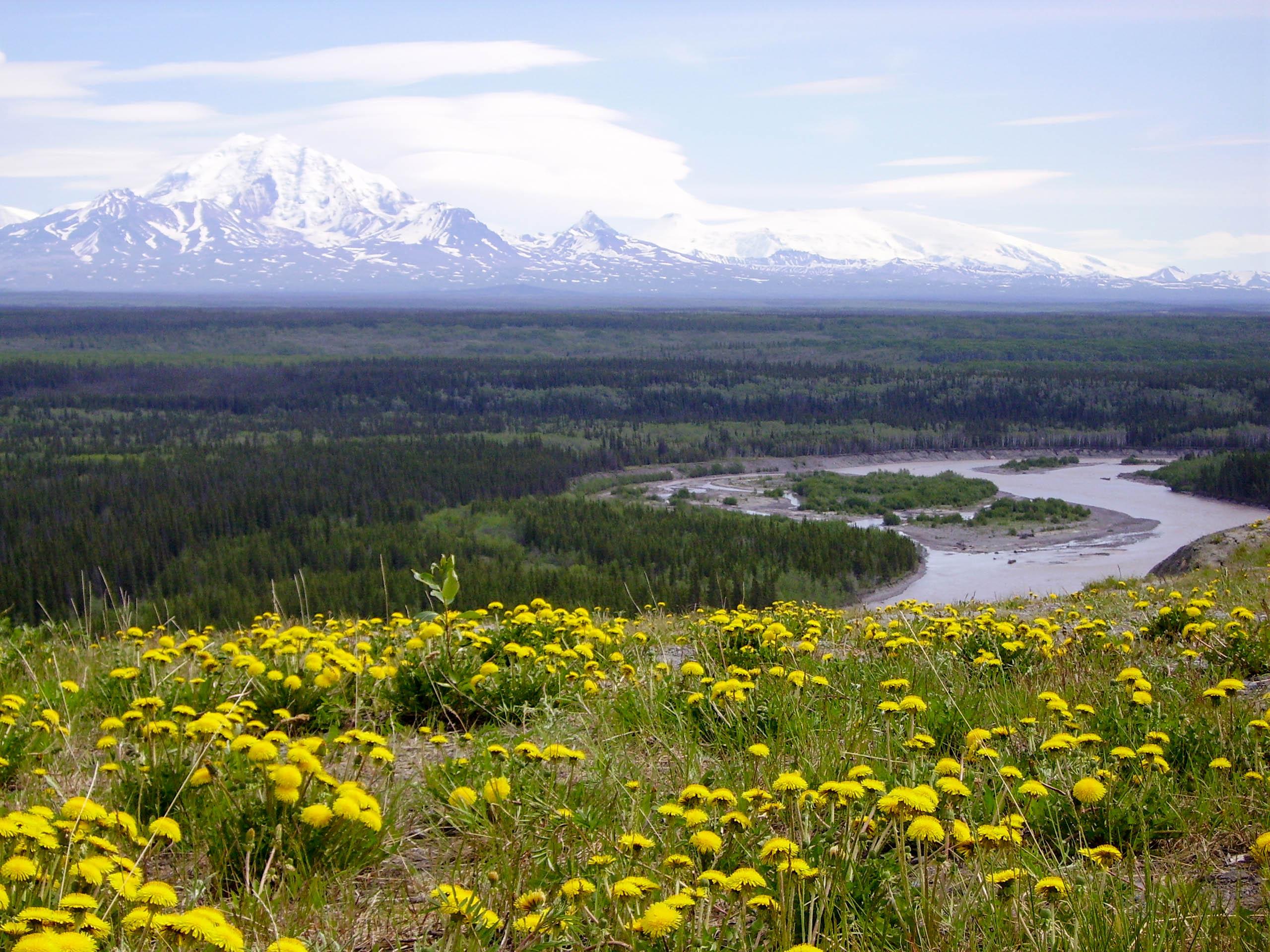Yukon Alaska Highlights