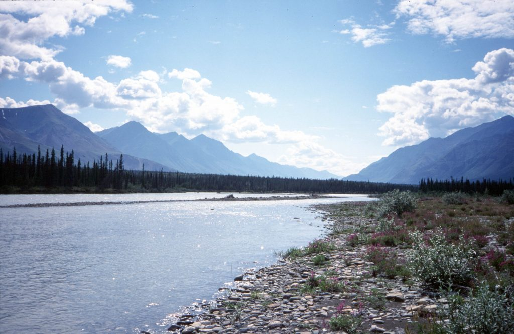 The Yukon Explorer - Snake River - beautiful river