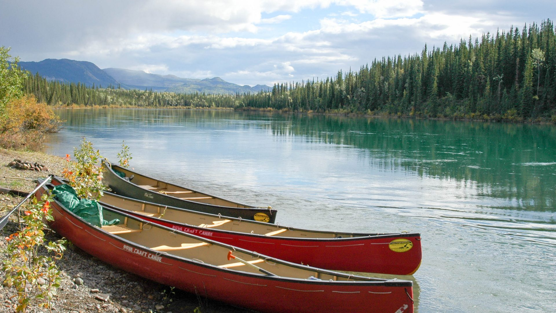 Yukon River Tour - Lake Laberge to Carmacks - Canoe next to the Yukon River