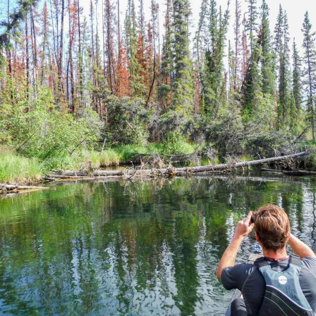 Beaver River: Explore Secret Waterways | Ruby Range Adventure